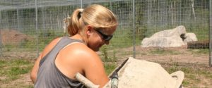 The Wildcat Sanctuary Internships