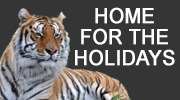 home-for-the-holidays2