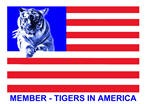 tigers_in_america_logo1small