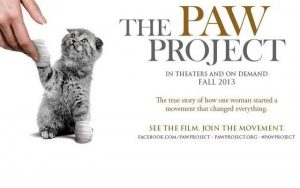 paw-project--600x375