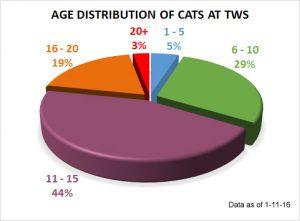 Cat age distribution 1-11-16
