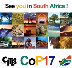 cites-see-you-in-south-africa